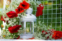 Garden lantern with papaver Stock Photography