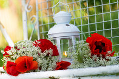 Garden lantern with papaver Royalty Free Stock Photos