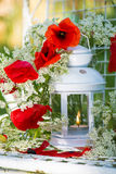Garden lantern with papaver Royalty Free Stock Photo