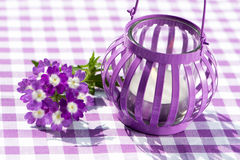 Garden lantern with verbena Stock Photography