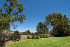Garden with large lawn Stock Photography