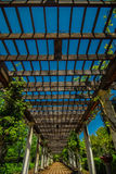 Garden Lattice walkway with stone pavers and vine flowers throug Royalty Free Stock Photography