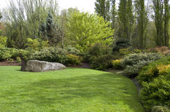 Garden Lawn After Spring Rain Royalty Free Stock Image