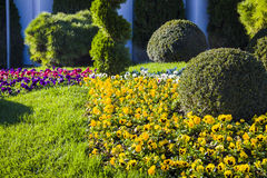 Garden Lawn. Peaceful Garden with a Freshly Mown Lawn Royalty Free Stock Image