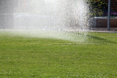 Garden lawn watering Stock Photography