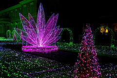 Garden of Light with Christmas Silhouettes Royalty Free Stock Images
