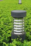 Garden light Royalty Free Stock Photography