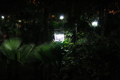 Garden Lights Royalty Free Stock Images