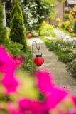 Garden lights. Red lanterns illuminate a path in the garden Stock Photos