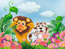 A garden with a lion and a tiger Stock Photo