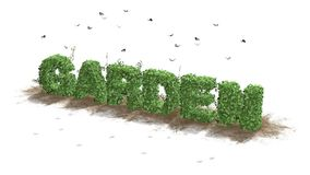 Garden - logo from green ivy leaves. And flying butterflies - separated on white background stock illustration