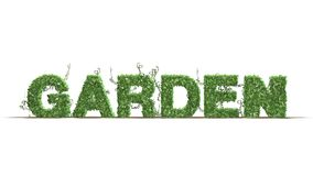 Garden - logo from green ivy leaves. Separated on white background stock illustration