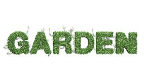 Garden - logo from green ivy leaves. Separated on white background vector illustration