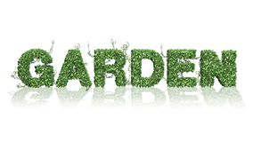 Garden - logo from green ivy leaves. Separated on white background royalty free illustration
