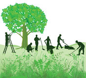 Garden maintenance. Illustration of common garden maintenance with workers pruning a large tree from a ladder, cutting the lawn, raking the moss and pushing a Royalty Free Stock Photos