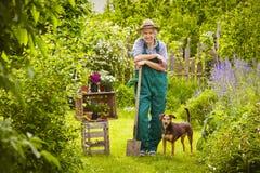 Garden man dog Royalty Free Stock Images