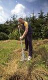 garden man working Στοκ φωτογραφία με δικαίωμα ελεύθερης χρήσης