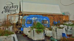 Garden mania , little gardens in bags Royalty Free Stock Image