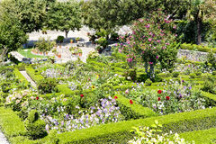 Garden in Marvao Stock Image