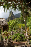 Garden at Maui's 'Iao Needle Royalty Free Stock Photo