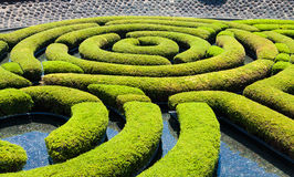 Garden Maze. Wonderful garden maze during a sunny day Stock Images