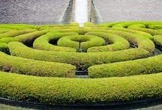 Garden Maze Stock Photography