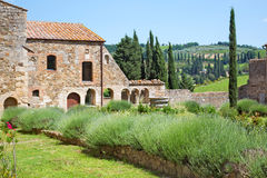 Garden of a medieval abbey in Tuscany Stock Images