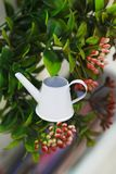 Garden miniature white watering can on the background of bushes stock image