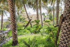 Garden Misfah Abreyeen Royalty Free Stock Image