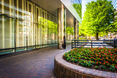 Garden and modern building in Richmond, Virginia. Royalty Free Stock Images