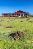 Garden mole mounds Royalty Free Stock Photo