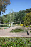 Garden at Montjuic in Barcelona Royalty Free Stock Photo