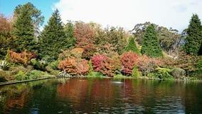 Garden @ Mt Wilson, Australia @ Mount Wilson, Blue Mountains  Australia. Lake and trees in a Mt Wilson garden Stock Images
