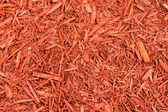 Garden Mulch Stock Photography