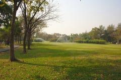 Garden nature. Green Stock Images