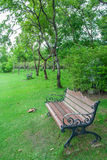 Garden. Nature Park into a beautiful green background Royalty Free Stock Photography