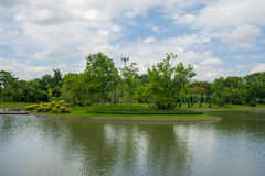 Garden. Nature Park into a beautiful green background Royalty Free Stock Photos