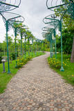 Garden. Nature Park into a beautiful green background Stock Images