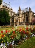 Garden near Notre Dame Stock Images