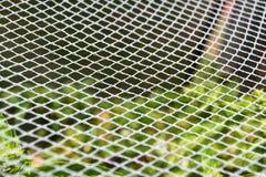 Garden Netting Perspective. White garden netting pattern perspective Stock Image