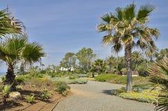 Garden next to the beach Stock Image