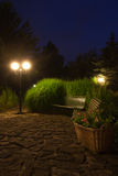 Garden at Night Stock Images