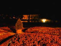 Garden at night 1. Garden on the night of flowers and flower bed Stock Image