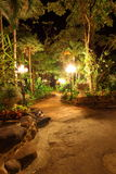 Garden in the night,mystery and lonely Royalty Free Stock Images