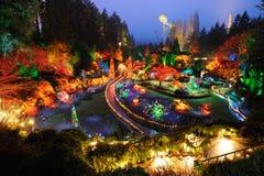 Garden night scene at christmas Royalty Free Stock Image