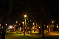 Garden night time. Of Chiang Mai University ,Thailand stock photo