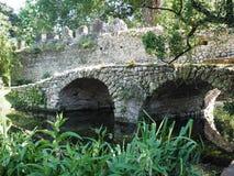 The Garden of Ninfa in Italy Stock Image