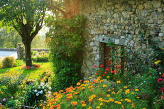 Garden and old house. Garden in the the french countryside with an old typical house Royalty Free Stock Photo