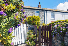 Garden and old house, village Port Isaac Royalty Free Stock Photography