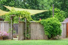 Free Garden Or Party Area Shaded By Sails And An Umbrella Behind Privacy Fence With Open Gate  With Vines Growing On A Trellis And On Royalty Free Stock Photo - 149379475